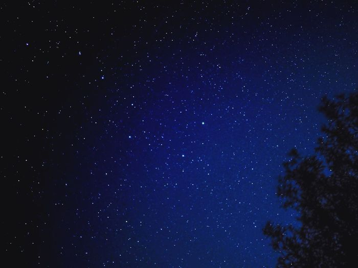 The great bear in the night sky of Denmark Night Sky The Plough Big Dipper Great Bear Night Star - Space Astronomy Sky Scenics - Nature Space Star Field Star Tranquility Beauty In Nature Galaxy Low Angle View Tranquil Scene Nature Space And Astronomy Science Infinity Constellation