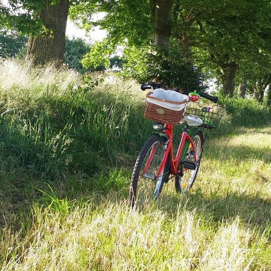 Kurze Pause auf der Radtour in Aurich