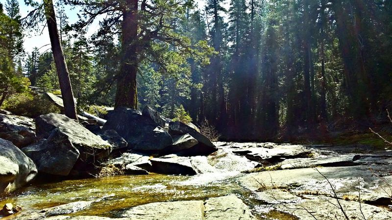 Nature_collection Eyem Nature Lovers  Mountain Stream Camping