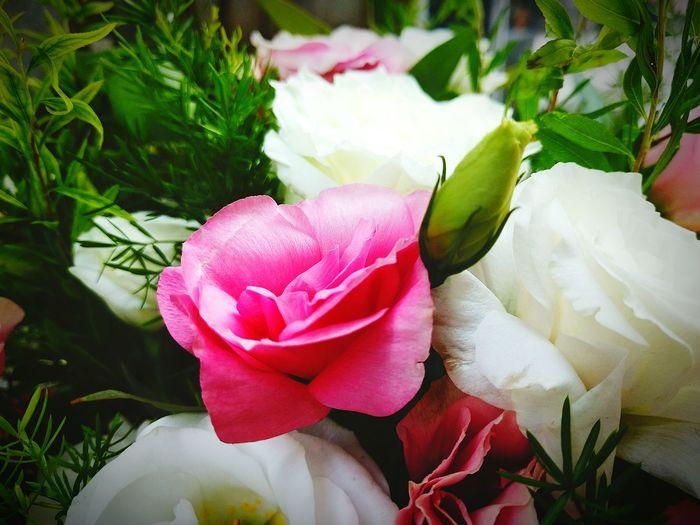 Flower Wedding Guangzhou