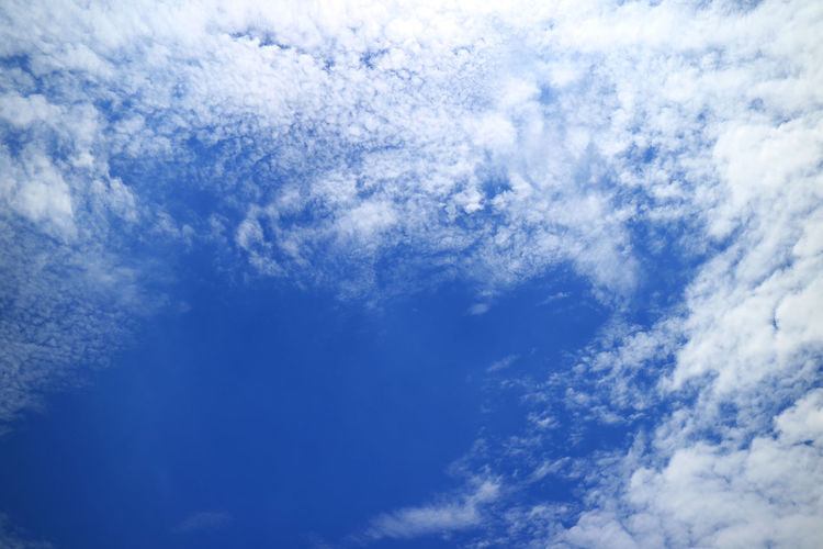 Vivid Blue Sunny Sky with Pure White Clouds Cloud - Sky Sky Beauty In Nature Scenics - Nature Blue Tranquility Backgrounds Nature White Color Cloudscape Low Angle View Day Tranquil Scene Idyllic Outdoors Meteorology Clean Tropical Climate Paradise Sunny Cumulus Cloud Cumulus Cumulonimbus Scattered Clouds Fluffy