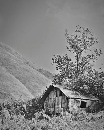 Abandoned built structure on landscape