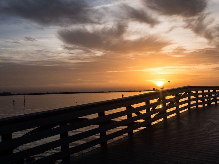 Nature Tampa Bay EyemEm Eyeemawards2018 TheGreatOutdoors Water Sky Sea Sunset Scenics - Nature Beauty In Nature Tranquil Scene Tranquility Horizon Horizon Over Water Nature Railing Land The Great Outdoors - 2018 EyeEm Awards