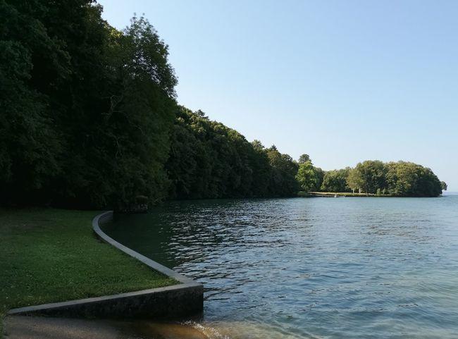 Tree Water Nautical Vessel Lake Summer Tennis Clear Sky Sky
