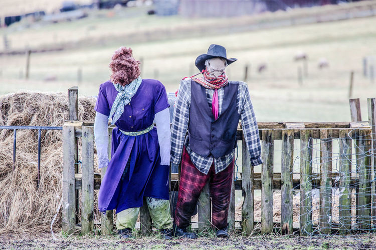 Scarecrows by fence