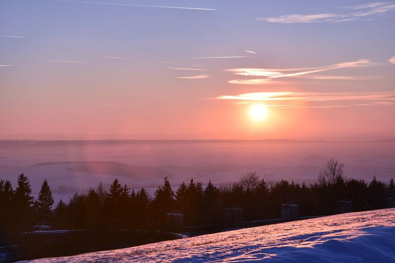 Thuringia Thuringen Buchenwald Gedenkstätte Weimar Winterlandschaft Sunset Sky Beauty In Nature Scenics - Nature Tranquility Tree Tranquil Scene Snow Cloud - Sky Sun Nature Plant Environment Winter Cold Temperature Orange Color Landscape No People Outdoors