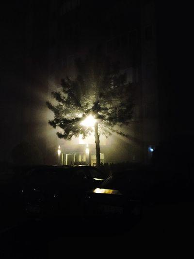 #EyeEmNewHere EyEmNewHere #light #tree Car No People Transportation Sky Land Vehicle Nature
