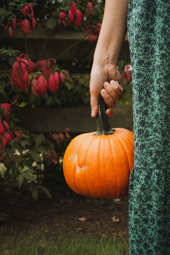 Low angle view of person holding pumpkin during autumn