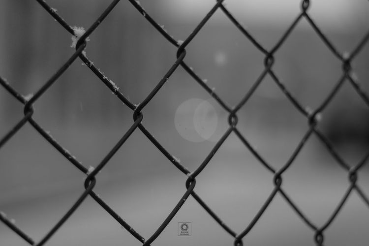 Full Frame Backgrounds Protection Metal Safety Security Chainlink Fence Sky Close-up Chainlink Razor Wire Pattern Crisscross Exclusion Wire Mesh Textured  Hexagon Forbidden Seamless Pattern Skylight Rejection Fence Architectural Detail Rough Calm Barbed Wire Bark Rugged Woven Design
