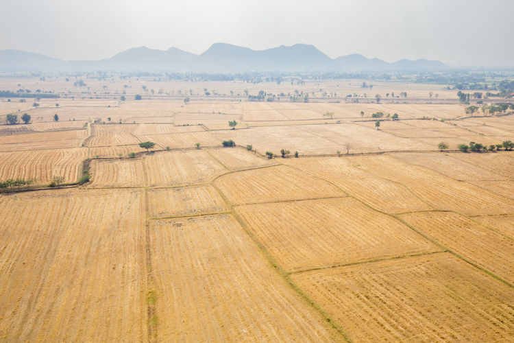High angle view of cultivated land against mountains
