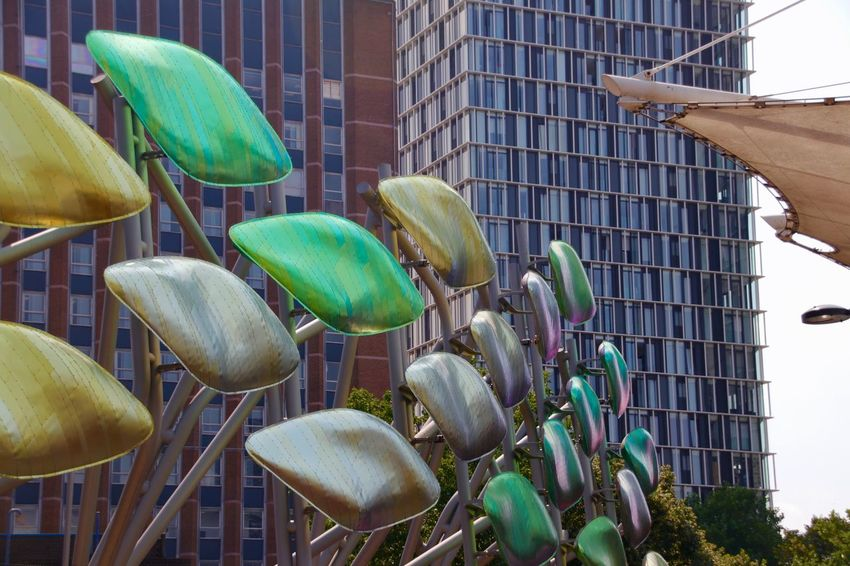 London Architecture Art Display Beauty In Nature Building Building Exterior Built Structure City Close-up Day Flower Freshness Green Color Growth Leaf Low Angle View Nature No People Office Building Exterior Outdoors Plant Plant Part Stretford