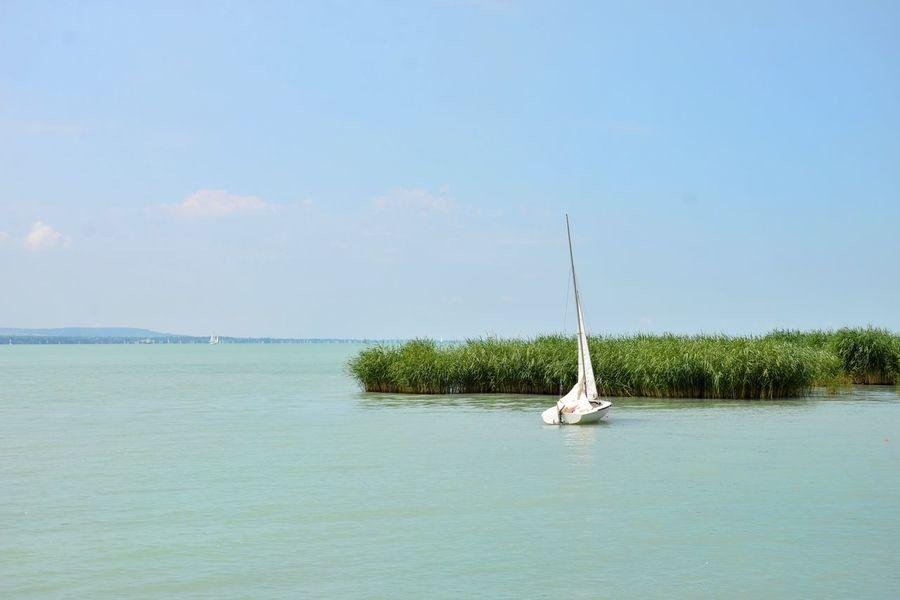 Water Sailboat Nature No People Sunshine Landscape Balaton Hungary Tihany Summer Lake