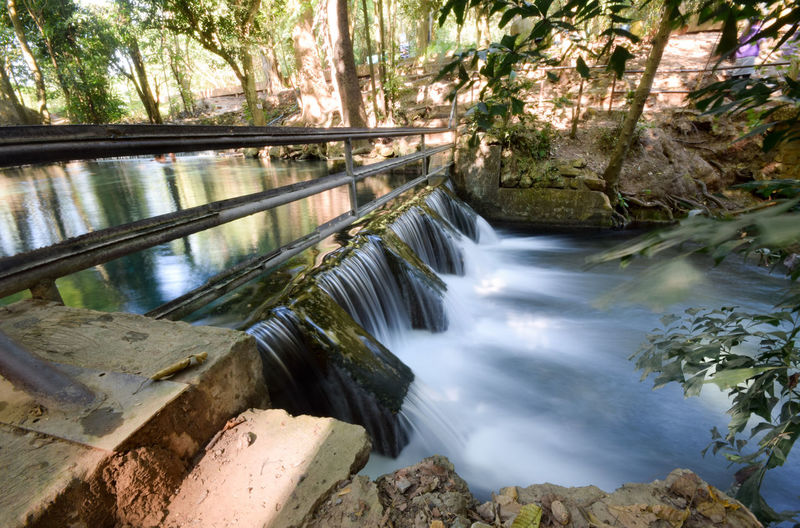 Wafer wall Water Tree Forest Plant Scenics - Nature Nature Motion Long Exposure Flowing Water Beauty In Nature Waterfall Day No People Outdoors Blurred Motion Rainforest Flowing Power In Nature