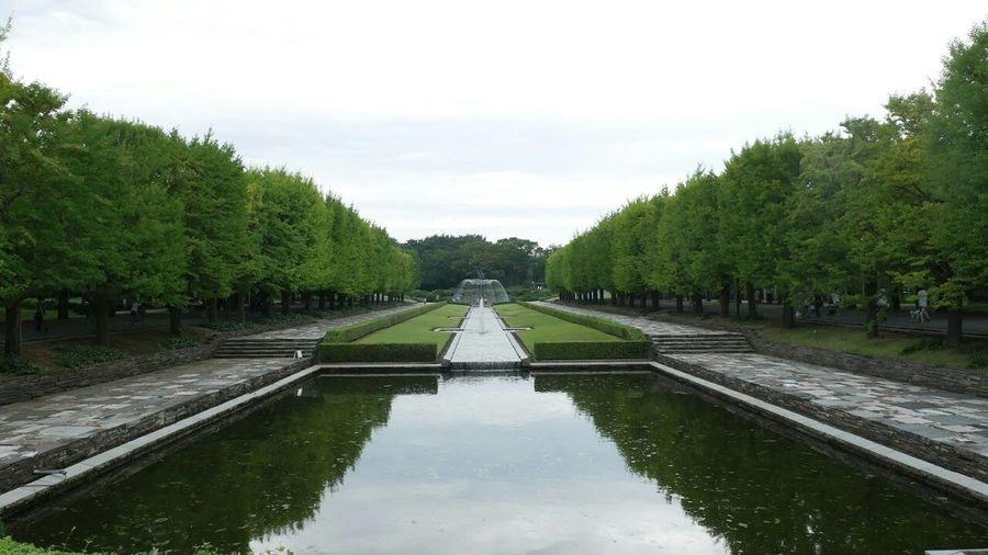 国立昭和記念公園
