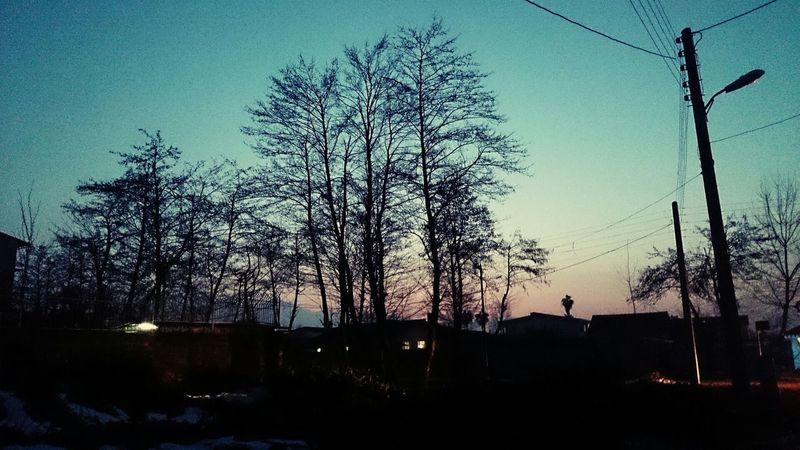 Tired ! Nature Sunset Walking Around #relax