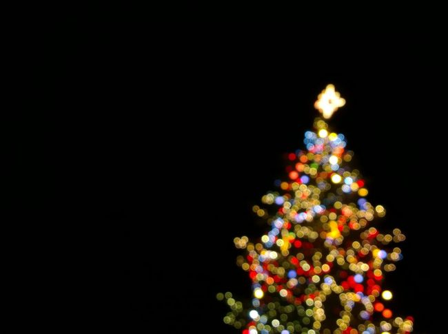 Christmas Tree Bokeh Arts Culture And Entertainment Bird Black Background Christ Christmas Tree Christmas Trees Copy Space Cultures Decoration Festival Glowing Holiday Ideas Night Simplicity Taking Photos