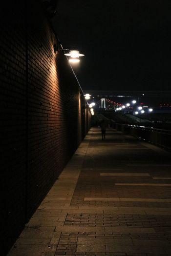 豊洲市場 Park 豊洲ぐるり公園 Night Illuminated Transportation Street City Lighting Equipment Mode Of Transportation Headlight Road Street Light