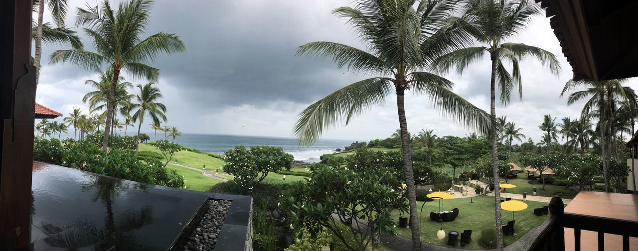 Another way to enjoy the nature Palm Tree Tree Sea Water Growth Scenics Sky Tranquil Scene Vacations Swimming Pool Tranquility Tall - High Beauty In Nature Travel Destinations Tropical Climate Coconut Palm Tree Nature Tourism Outdoors Day Tanah Lot