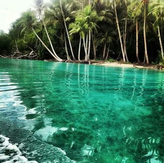 NewIrelandProvince Papuanewguinea Crystalclearwater Making My Bucketlist ❤ Mustsee Someday Beautyinnature  NaturalBeauty♥ Beach Sand