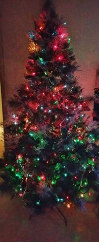 Best Christmas Lights my family lights the way with love. Tree Lightbright