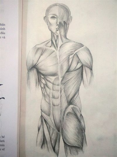 My homework with the body Working Hard My Draw ♥