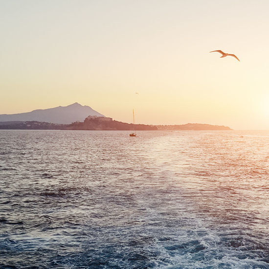 Avian Beauty In Nature Bird Flying Idyllic Mountain Nature No People Non-urban Scene Outdoors Rippled Scenics Setting Sun Sky Spread Wings Sun Sunset Sunset_collection Tranquil Scene Tranquility Water Wildlife By The Sea