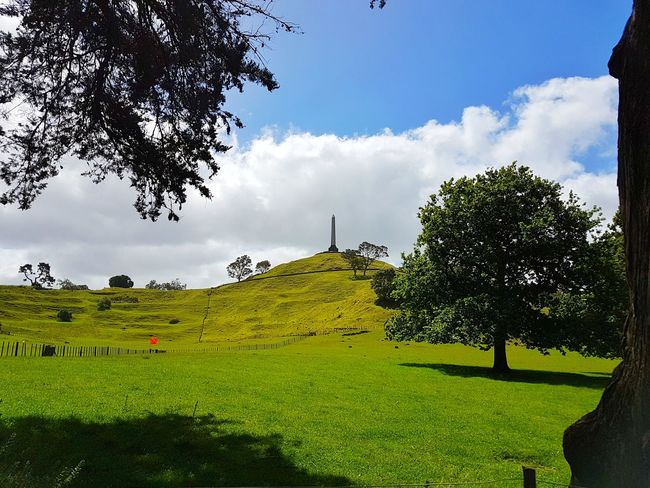 A great day to go to Cornwall Park! :-) Nature Tree Social Issues Landscape Environmental Conservation No People Sky Travel Destinations Growth Beauty In Nature Outdoors Day Scenics Lush - Description Grass