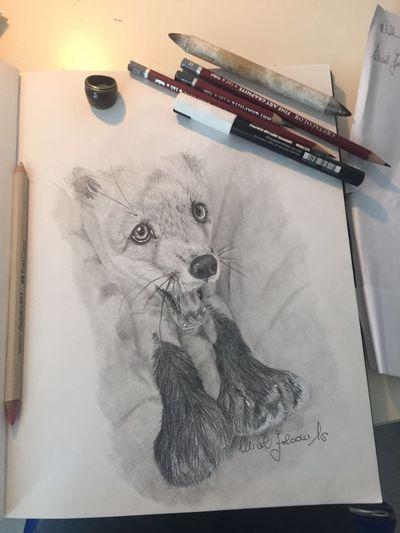 Draw Drawing Fox Volpe  Life Blackandwhite Disegno Lovedrawing EyeEm EyeEmAnimalLover ❤