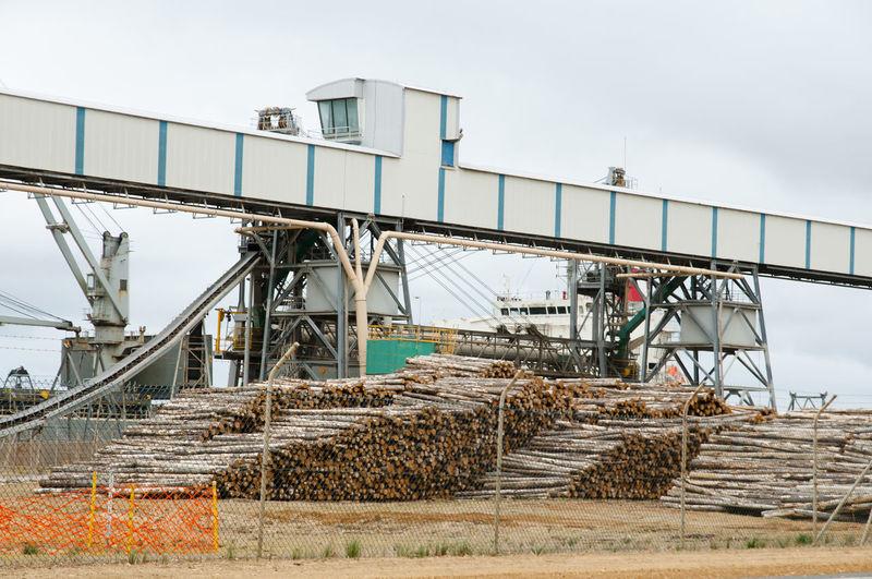 Lumber Mill Albany Australia Sawmill Wood Industry Logs Lumber Lumber Mill