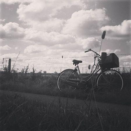 Fietstochtje Genieten Vrijheid Buitenlucht Nederland Friesland Landschap Zon Wolken Clouds Sun Outside Bysicle
