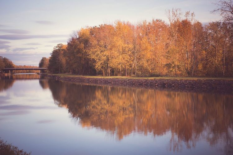 Fall Fall Colors Autumn Orange Color Calm Canal Reflection Water Tree Sky Lake Beauty In Nature Plant Tranquility Scenics - Nature Tranquil Scene Nature Waterfront No People Idyllic Symmetry Sunset Outdoors Cloud - Sky Non-urban Scene Reflection Lake