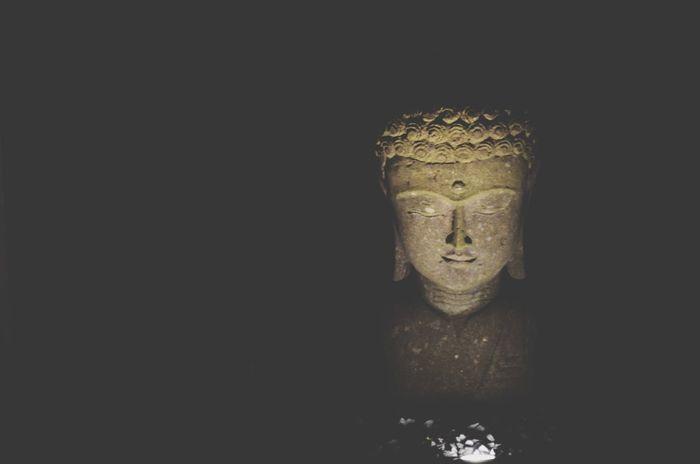 Buddha Art Buddha Statue Statue Park A Walk In The Park Night Nightphotography Light Light And Shadow