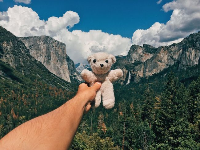 """In 1991, my parents were on a road trip across the U.S. and brought me a white teddy bear from Yosemite National Park as a gift in a bag from the park. I don't have many young childhood memories but I remember this one perfectly. """"Iôzemite"""" I've named it, like saying """"Yosemite"""" in a wrong way in portuguese, because that's how I read it on the bag. Today, 25 years later, he came back home. 🌲🐻🌲 Human Hand Human Body Part Cloud - Sky Holding Personal Perspective Outdoors Day Men Mammal Building Exterior Mountain Architecture Real People One Man Only Domestic Animals Beauty In Nature People Teddy Bear Childhood Memories Toys Long Goodbye TCPM The Great Outdoors - 2017 EyeEm Awards Live For The Story Place Of Heart Let's Go. Together. EyeEm Selects The Week On EyeEm Connected By Travel"""