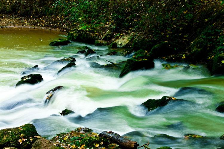 Scenic view of river stream