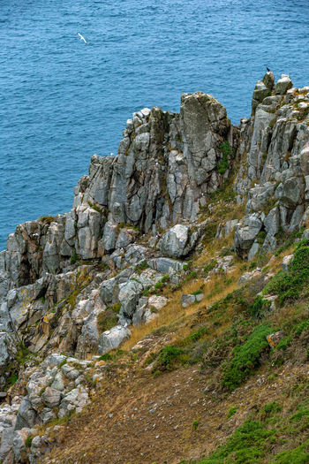 English Channel Eperquerie Isle Of Sark Birds Cliff Day Island Nature No People Outdoors Rock - Object Sark Sea Sky Water