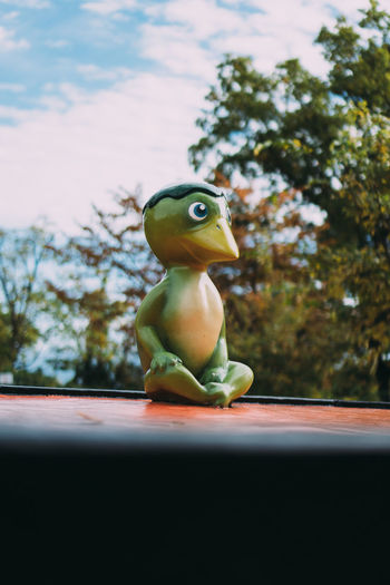 Close-up of frog on toy