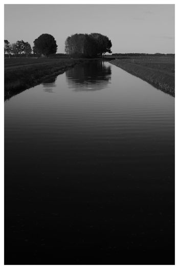 Canal Canals And Waterways Blackandwhite Blackandwhite Photography Blackandwhitephotography Black And White Black And White Photography EyeEm Best Shots - Black + White Water Tree Reflection Sky