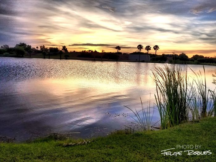 5:45am at Rio Bend Golf Course Sunrise Golf Course Tree Sunset Reflection Cloud - Sky First Eyeem Photo