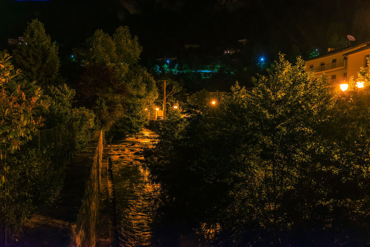 Illuminated street amidst trees and buildings at night