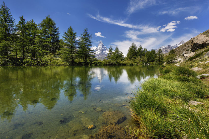 Panoramic view of Swiss Alps and Matterhorn Mountains near Zermatt area. Small lake in the middle of the mountains with beautiful mountain reflection in it , Switzerland Matterhorn  Zermatt Beauty In Nature Cloud - Sky Coniferous Tree Day Green Color Growth Lake Mountain Nature No People Non-urban Scene Outdoors Plant Reflection Scenics - Nature Sky Swiss Swiss Alps Switzerland Tranquil Scene Tranquility Tree Water