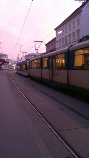 Strassenbahn Badner Bahn März 2014 Puplic_transportation