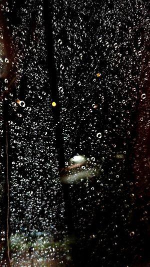 Rain Rainy Days Night Raindrops Railing Evening Rain Love Get Wet
