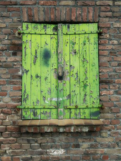 Old Wooden Window Flap Windows Green Old Architecture Old Buildings Still Life Minimalism Wood - Material Built Structure Green Color Architecture Outdoors Taking Pictures Hello World Best Of EyeEm EyeEm Best Shots EyeEm Masterclass Photography EyeEm Beautiful EyeEm Gallery Germany