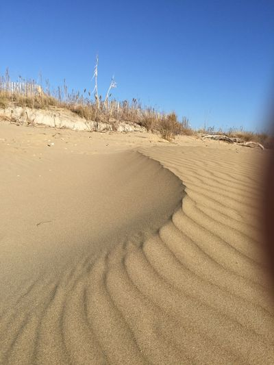 Nature Sand Dune wind Sand And Wind