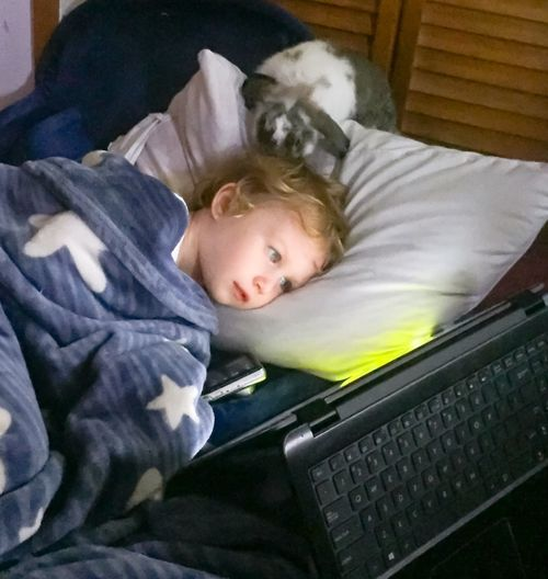Home Is Where The Art Is Bunny  Pet Love Marleigh Marleighgrace Childhood Family Relaxation