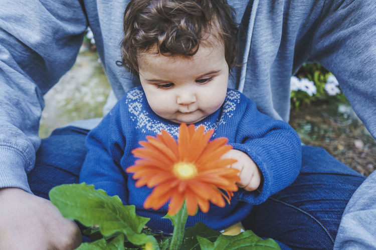 High angle view of boy with flower petals on plant