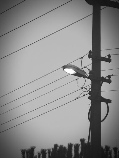 Sky Nature Day Outdoors Tree No People Cable Electricity  Low Angle View Electricity Pylon Street Lamp EyeEm Gallery EyeEm