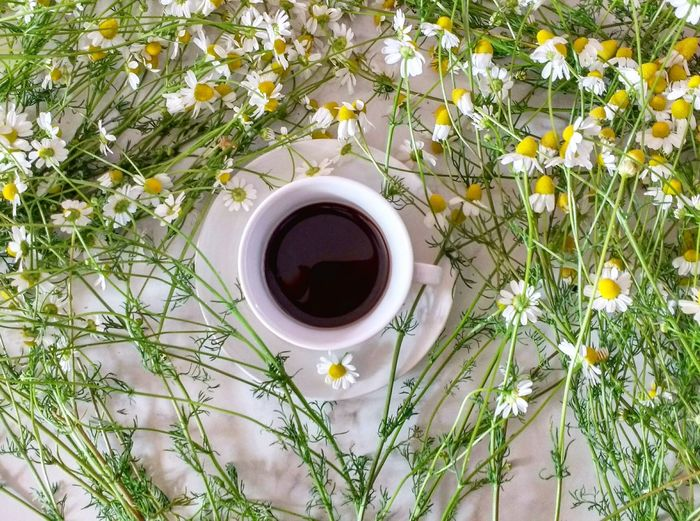 High Angle View Of Black Coffee In Cup Amidst Flowers On Table