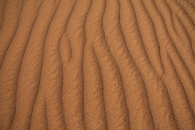 Sand Sand Dune Dubai Dubai Desert Adventure Travel Luxury Macro EyeEmNewHere