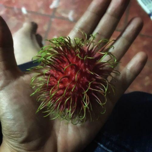 Rambutan-sweet